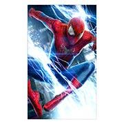 Spider-man. Размер: 30 х 50 см